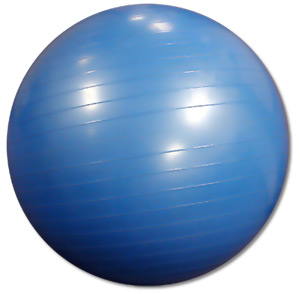 Stability Ball Exercises for Legs and Abs
